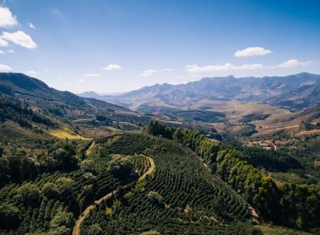Você conhece todas as regiões produtoras de café do Brasil?