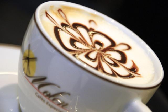 molen_cafes_especiais