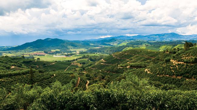Região montanhosa do Sul de Minas.