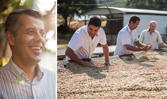 Arthur Fiorotti e Marcelo Cortelletti analisam café no terreiro suspenso de Luís Carlos Gomes (a esquerda).