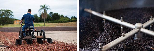 Zito revolvendo o volume   de café recém-chegado ao terreiro e detalhe da torra, que acontece na torrefação Lugus